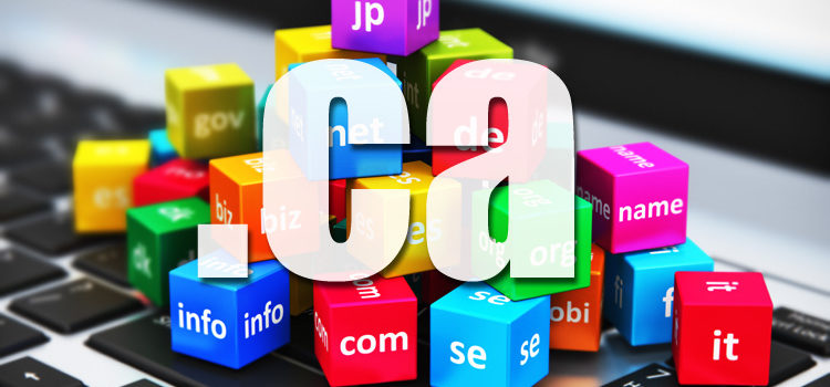 Should you Register a .ca Domain for your Canadian Business?