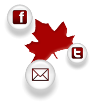 Canadian Online Behaviour for Businesses