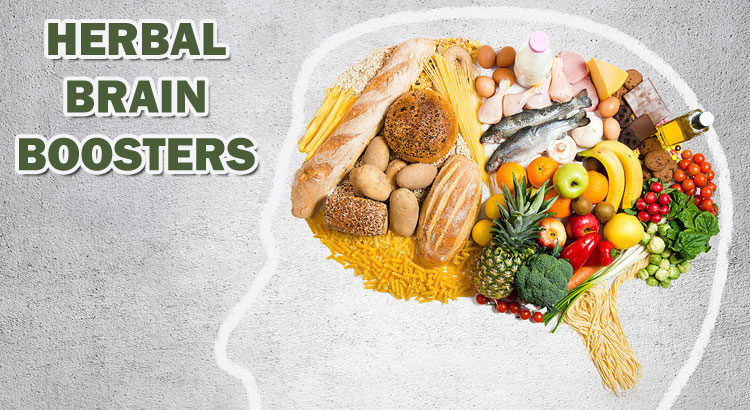 6 Herbal Brain Boosters Used by Highly Successful Entrepreneurs ©