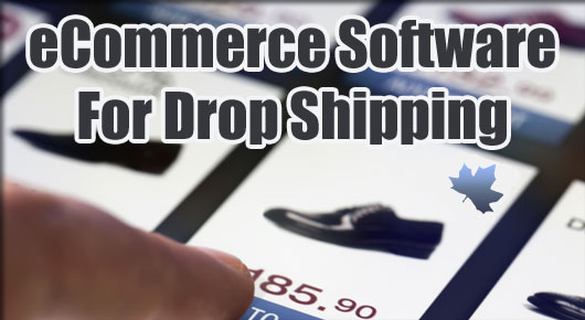 The Best eCommerce Software Platforms for Drop Shipping