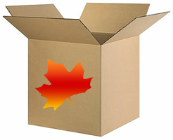 Online Canadian Businesses - Shipping Options