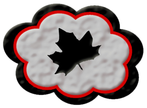 Is Cloud Computing and Internet Business a Match made in Canada?