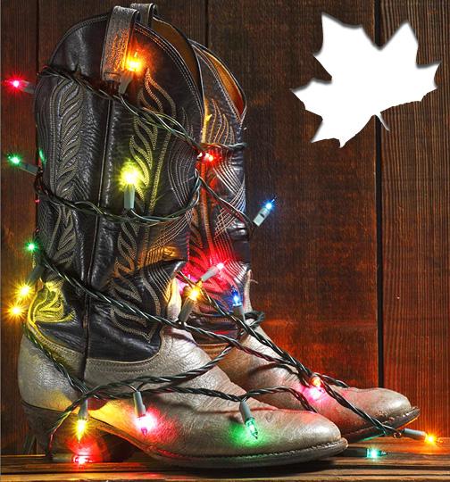 2014 Holiday Season Canada Online Shopping