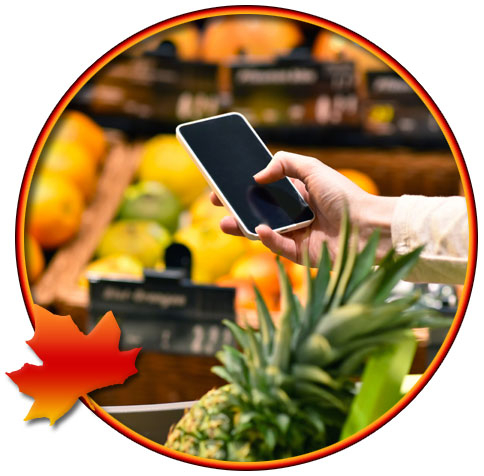 Canadian Grocery Shoppers Hungry for Omni-Channel Savings and Convenience (Statistics)