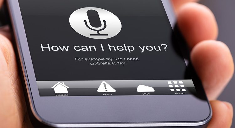 Canadian Report: English and French Use of Voice Search