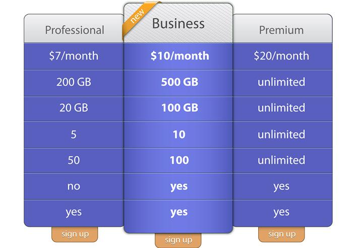 Website Hosting Packages Example