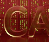 Report: Domain Names in Canada