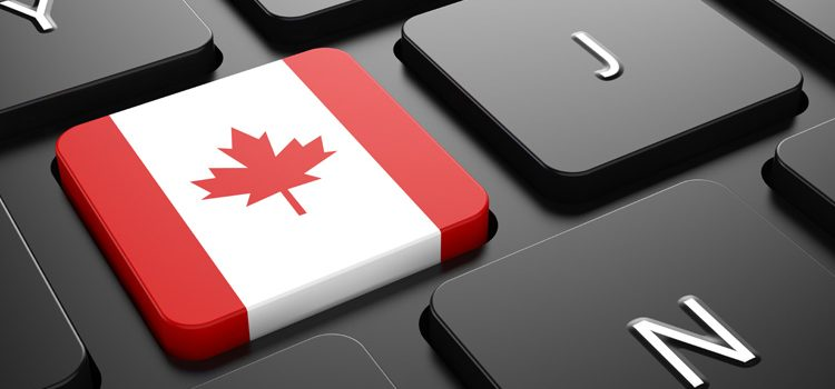 The Pandemic Behaviour of Online Canadians (Infographic)